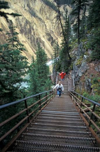 Stock Photo: 4261-26901 Grand Canyon, Lower Falls, Yellowstone National Park, United States of America, America