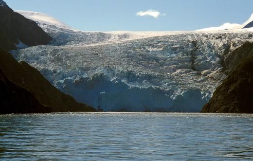 Stock Photo: 4261-27048 Sea lions, Resurrection bay, Alaska, United States of America, North America