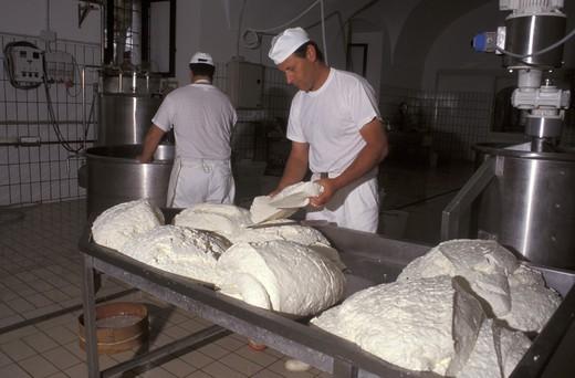 Stock Photo: 4261-2731 Preparation of the Mozzarella di Bufala, Piana del Sele, Campania, Italy