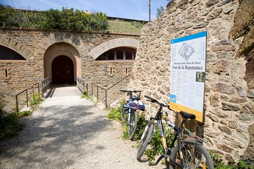 Fort de la Repentance, Porquerolles island, Port-Cros national park, Hyères, France, Europe : Stock Photo