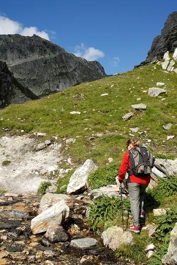 Stock Photo: 4261-29714 Going to Col Fenetre, Gran San Bernardo Valley, Aosta Valley, Italy
