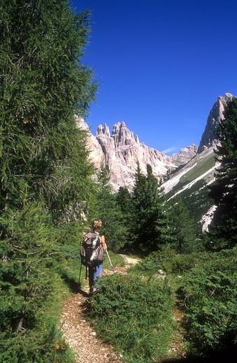 Stock Photo: 4261-30090 Trekking in Catinaccio group, Sciliar - Catinaccio natural Park, between Fassa Valley and Tires Valley, Trento province, Italy