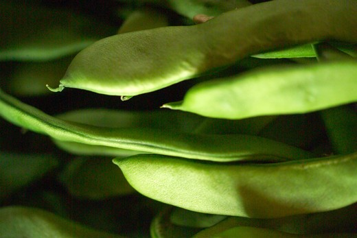 French bean, Naples, Campania, Italy : Stock Photo