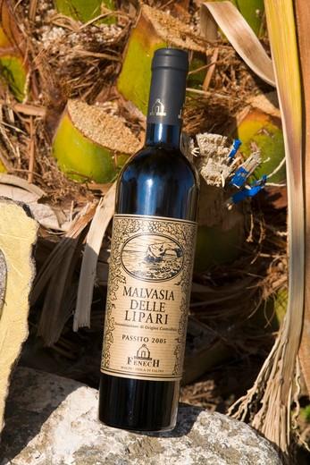 Malvasia wine, Malfa, Salina island, Sicily, Italy : Stock Photo