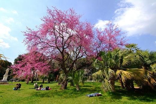 Park, Villa Torlonia, Rome, Lazio, Italy : Stock Photo