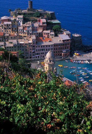 Foreshortening, Vernazza, Cinque Terre, Ligury, Italy : Stock Photo