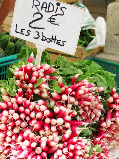 Stock Photo: 4261-50480 Radish, Provençal market, Apt, Provence-Alpes-Côte d'Azur, France, Europe