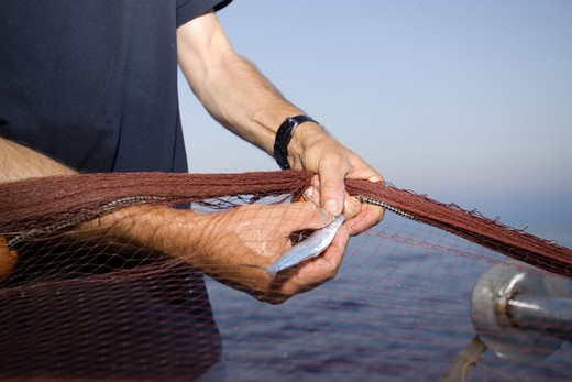 Stock Photo: 4261-6087 Anchovy of Menaica fishing, Acciaroli, Parco Nazionale del Cilento e Vallo di Diano, Campania, Italy