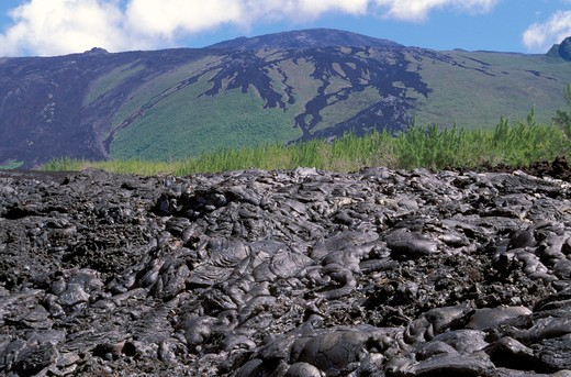 Stock Photo: 4261-64775 Piton de la Fournaise shield volcano, Reunion island, Indian Ocean, Africa