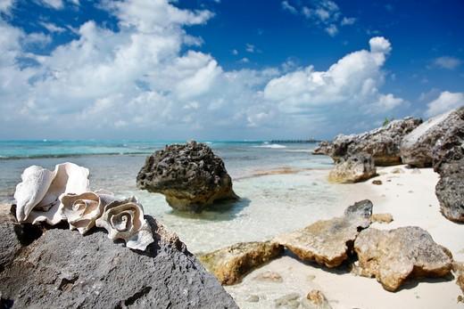Stock Photo: 4261-66512 Isla Mujeres, Yucatan, Mexico, America