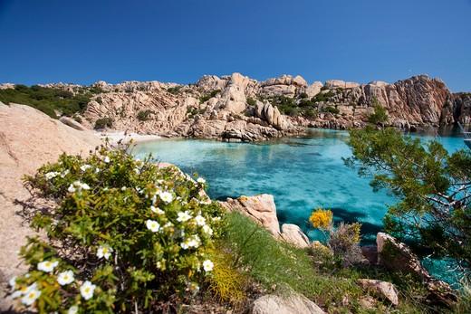 Cala Coticcio, Spiaggia Tahiti, Isola di Caprera, parco nazionale Arcipelago della Maddalena, La Maddalena (OT), Sardinia, Italy, Europe : Stock Photo