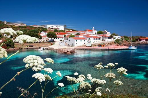 Cala d'Oliva, Asinara island, Porto Torres, Sardinia, Italy, Europe : Stock Photo
