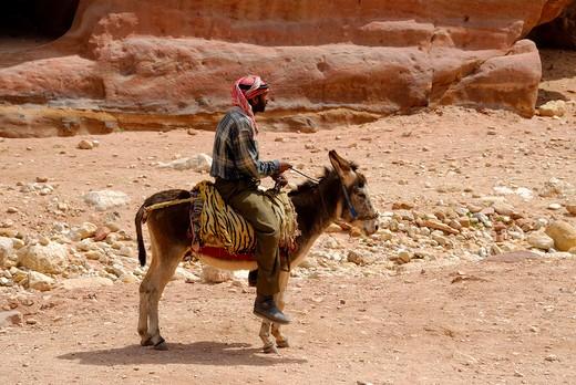 Local men on donkey, Jordan, Middle East : Stock Photo