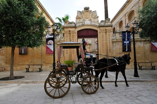 Coach at the entrance of Natural history Museum, Mdina, Malta, Europe : Stock Photo