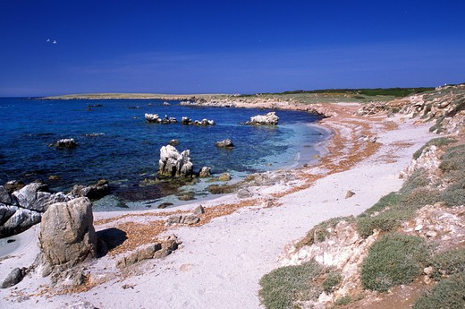 Coast, Mal di Ventre island, Sinis, Sardinia, Italy : Stock Photo
