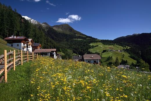 Foreshortening, Proves, Alta Valle di Non, Trentino Alto Adige, Italy : Stock Photo