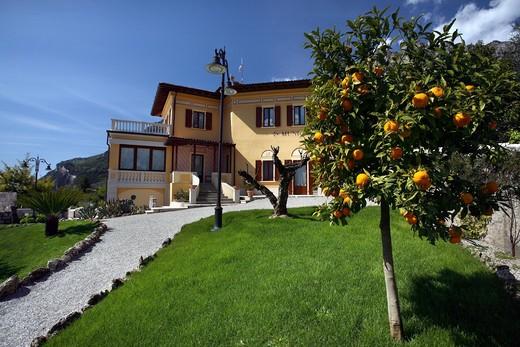 Garden, Municipal palace, Limone sul Garda, Lombardy, Italy : Stock Photo