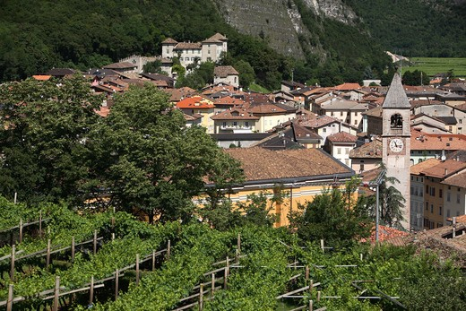 Mezzolombardo, Trentino, Italy : Stock Photo