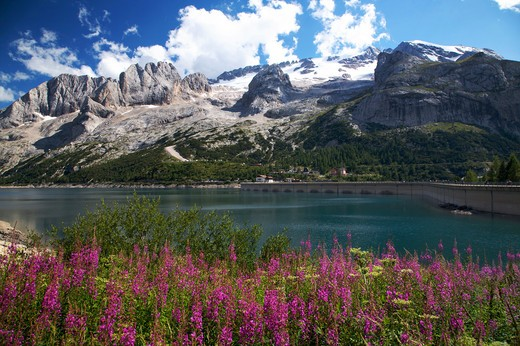 Stock Photo: 4261-77586 Fedaia artificial lake, Fedaia pass, Dolomites, Fassa valley, Trentino Alto Adige, Italy, Europe