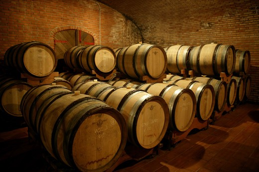 Barrels, the cellar, Bellavista winery, Erbusco, Lombardy, Italy : Stock Photo