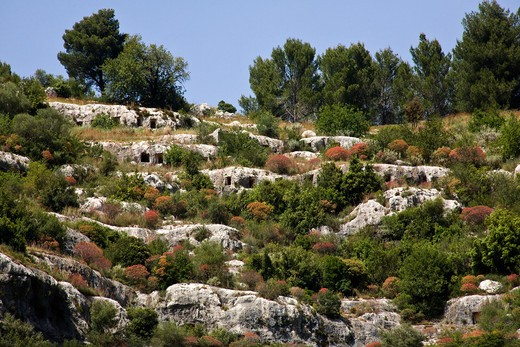 Stock Photo: 4261-85372 Square rock-cut tombs, Rocky Necropolis of Pantalica, dating from the 13th to the 7th centuries bc, UNESCO World Heritage Sites, river Anapo valley, Syracuse, Sicily, Italy, Europe