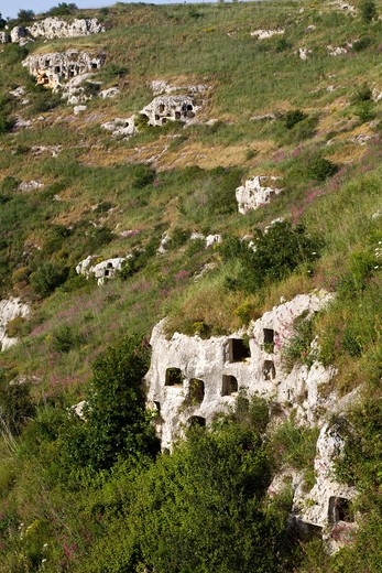 Square rock-cut tombs, Rocky Necropolis of Pantalica, dating from the 13th to the 7th centuries bc, UNESCO World Heritage Sites, river Anapo valley, Syracuse, Sicily, Italy, Europe : Stock Photo