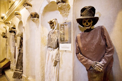 Mummy museum, Museo delle mummie,