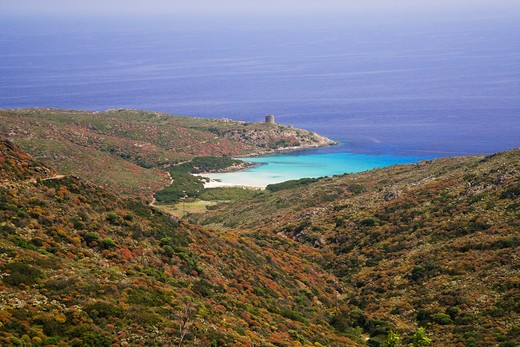 "Stock Photo: 4261-88112 The north-east coast of the island with the Aragonese tower and the beach of ""cala d'Arena"", Asinara Island, Asinara National Park, Sardinia, Italy, Europe"