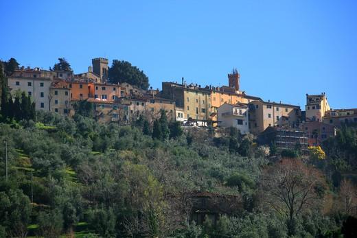 Stock Photo: 4261-91662 Foreshortening, Castagneto Carducci, Tuscany, Italy
