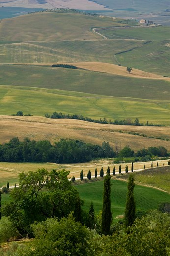 Stock Photo: 4261-98183 Foreshortening of Monticchiello, Tuscany, Italy