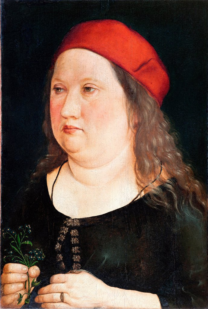 Portrait of a man by Durer, Albrecht (1471-1528)\ Skokloster Castle\ 1497\ Oil on wood\ 41x29\ Germany\ Renaissance\ Portrait\ Painting : Stock Photo