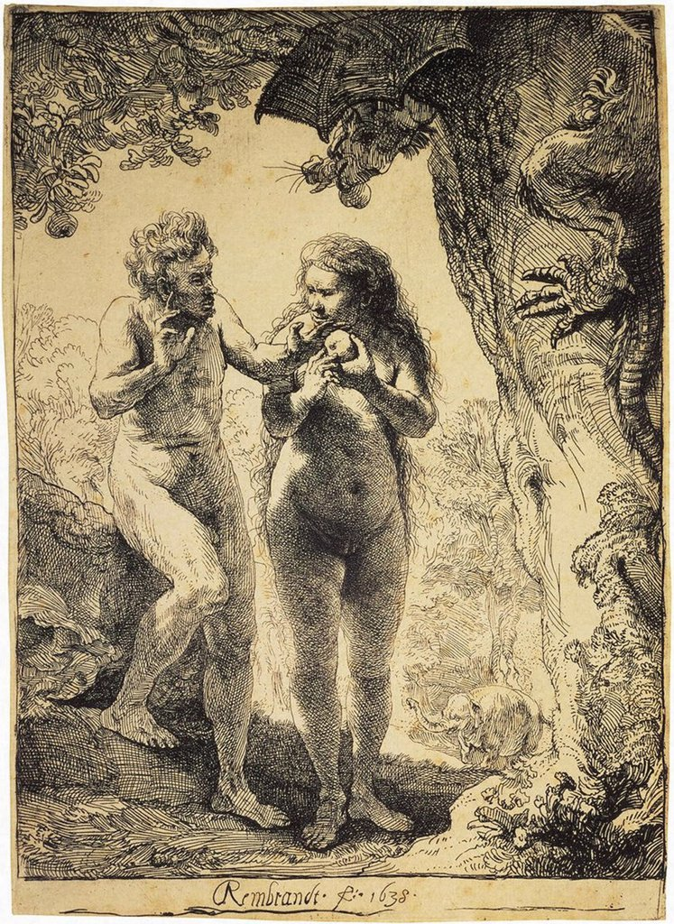 Stock Photo: 4266-3015 Adam and Eve by Rembrandt van Rhijn, etching, 1638, 1606-1669, Russia, St. Petersburg, State Hermitage, 16, 3x11, 5