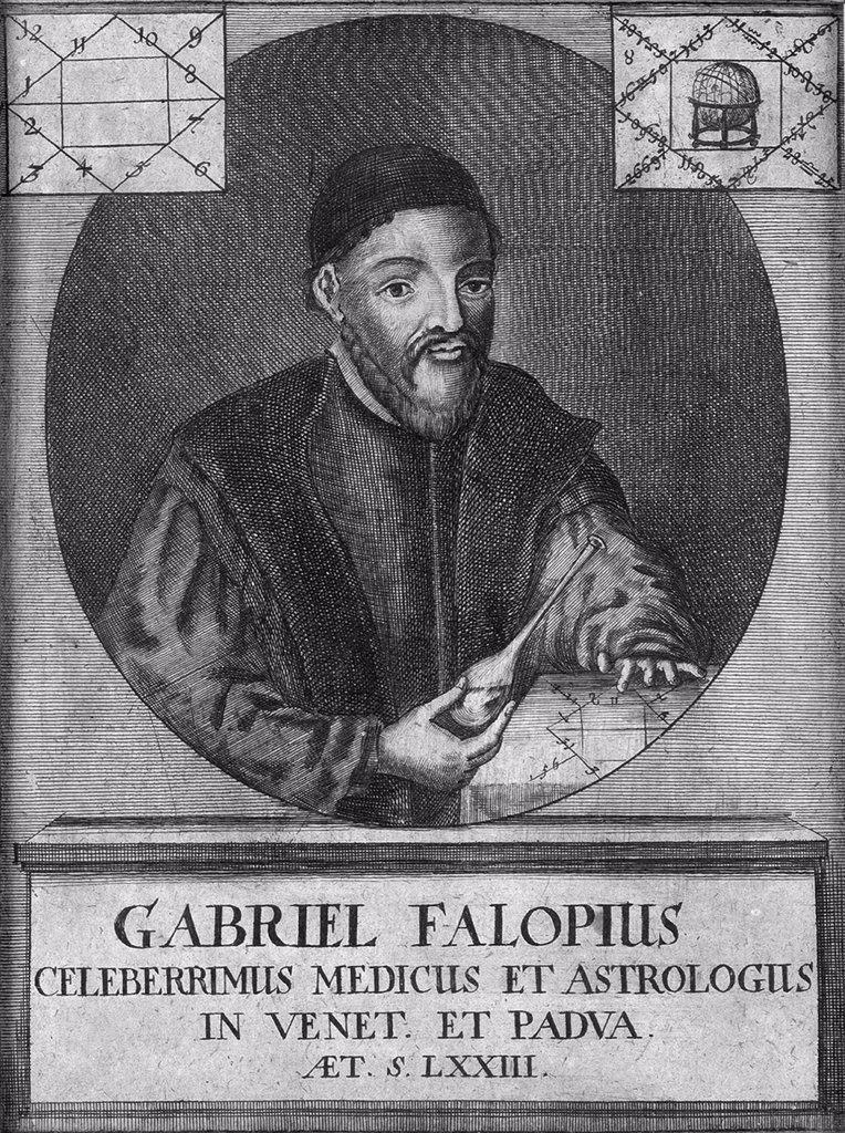 Stock Photo: 4266-6867 Portrait of doctor Gabriele Falloppio by Anonymous painter, Copper engraving, Private Collection