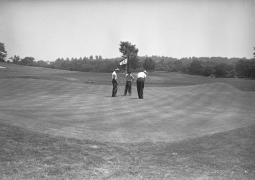 Stock Photo: 4267R-3496 Three men on golf course, (B&W)