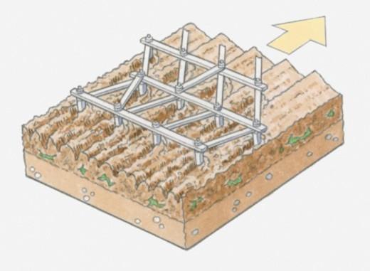 Illustration of ploughing soil using harrow : Stock Photo