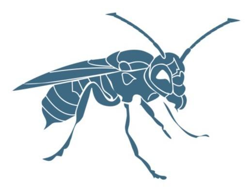 Digital illustration of a wasp : Stock Photo