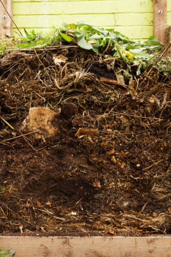 Stock Photo: 4268R-3252 Compost heap, close up