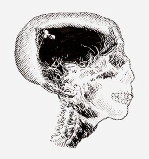 Black and white illustration of Tutankhamun's skull : Stock Photo