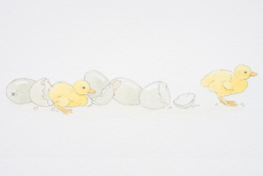 Stock Photo: 4268R-7177 Two baby ducklings emerging from broken egg shells.