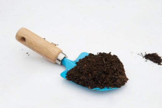 Stock Photo: 4268R-8186 Compost on trowel
