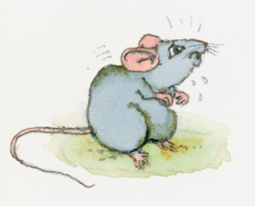 Stock Photo: 4268R-8538 Cartoon of terrified mouse crouching and sweating with fear