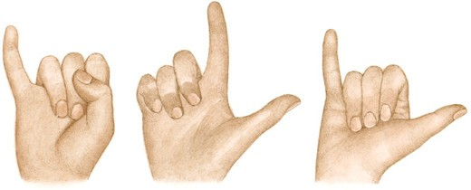 Stock Photo: 4268R-8744 Illustration of sign language using fingers and thumbs to sign 'I love you'