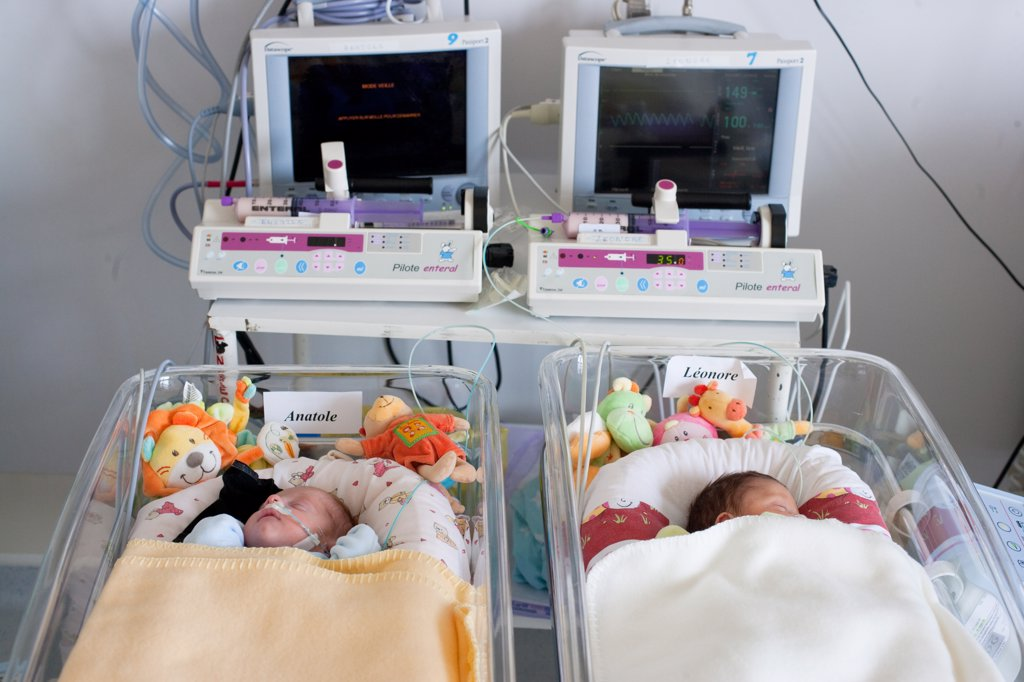 Premature twins newborn babies. Obstetrics and gynaecology department, Saintonges hospital, Saintes, France. : Stock Photo