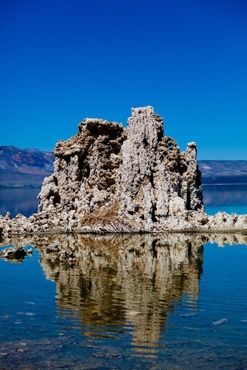 Mono Lake in California. It has a salt and arsenic high level. Sediment samples have revealed a bacteria strain GFAJ-1 which is characterized by its ability to replace the arsenic to phosphorus. : Stock Photo