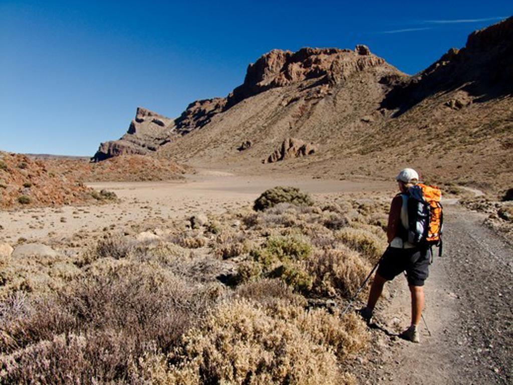 Stock Photo: 4269-23509 Randonnée sur la caldeira de Las Canadas, Tenerife, Iles Canaries, Espagne