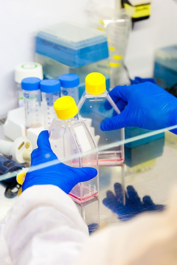 Stem cells research laboratory. : Stock Photo