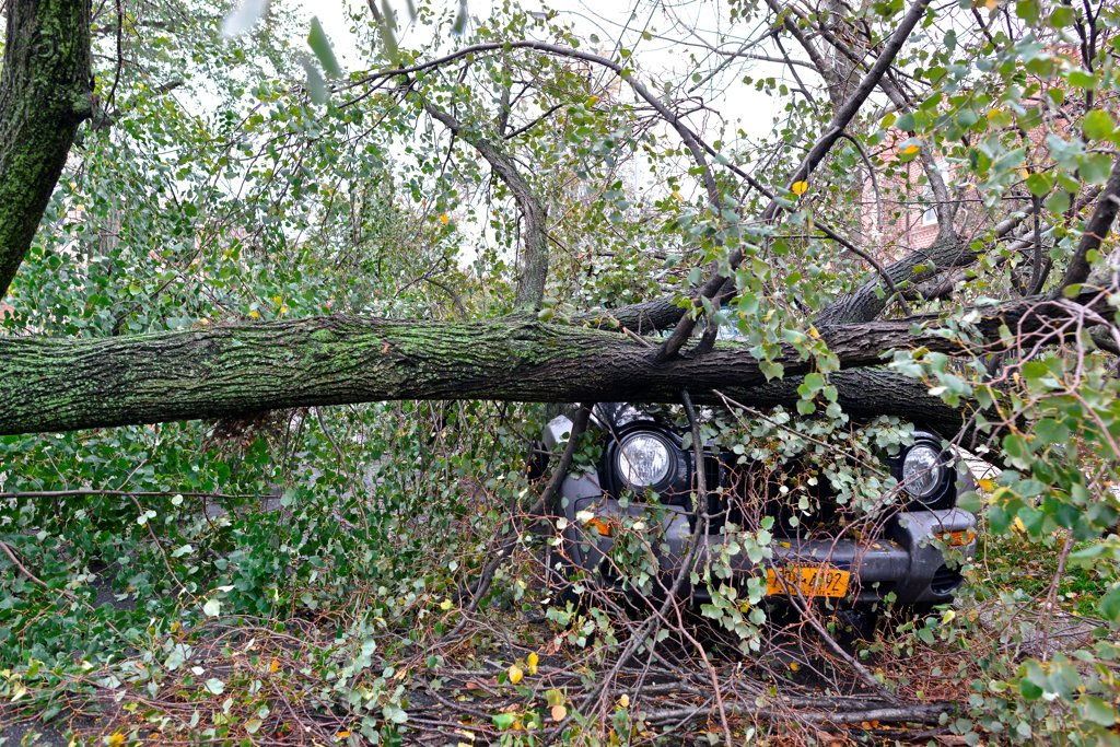 Stock Photo: 4271-1127 USA, New York City, Queens, Aftermath of tropical hurricane Sandy, October 30, 2012