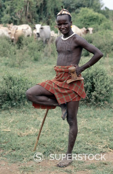 Stock Photo: 4272-10080 A Dassanech man stands on one leg in typical pose while looking after his familys cattle in the Omo Delta, one of the largest inland deltas in the world. The Dassanech speak a language of Eastern Cushitic origin. They practice animal husbandry and fishing as well as agriculture.
