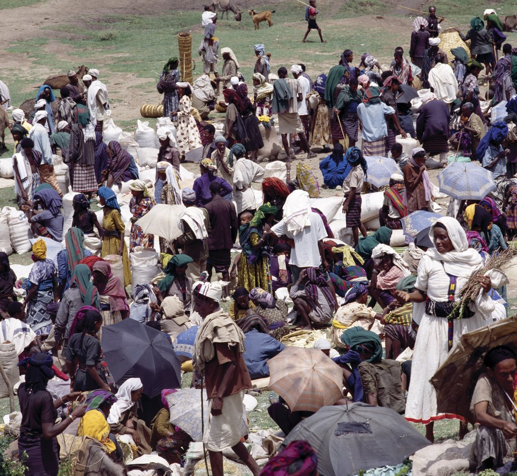 A large gathering of people at Senbetes livestock market, which is an important weekly market close to the western scarp of the Abyssinian Rift. Afar nomads from the low-lying arid regions of Eastern Ethiopia trek long distances there to barter with Amhara and Oromo farmers living in the fertile highlands. : Stock Photo