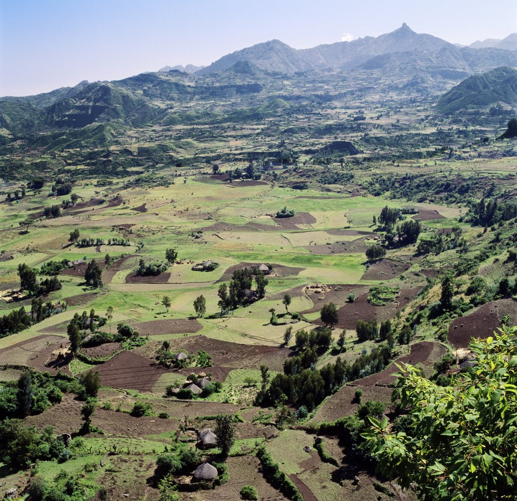 Stock Photo: 4272-10193 Rich farming country on a highland plateau north of Debre Sina.  Ethiopia is a land of vast horizons and dramatic scenery.  Every inch of fertile land is cultivated by hand to feed Ethiopias population of over 60 million. Agriculture forms the background of the countrys economy with 90 percent of its population earning a living from the land.
